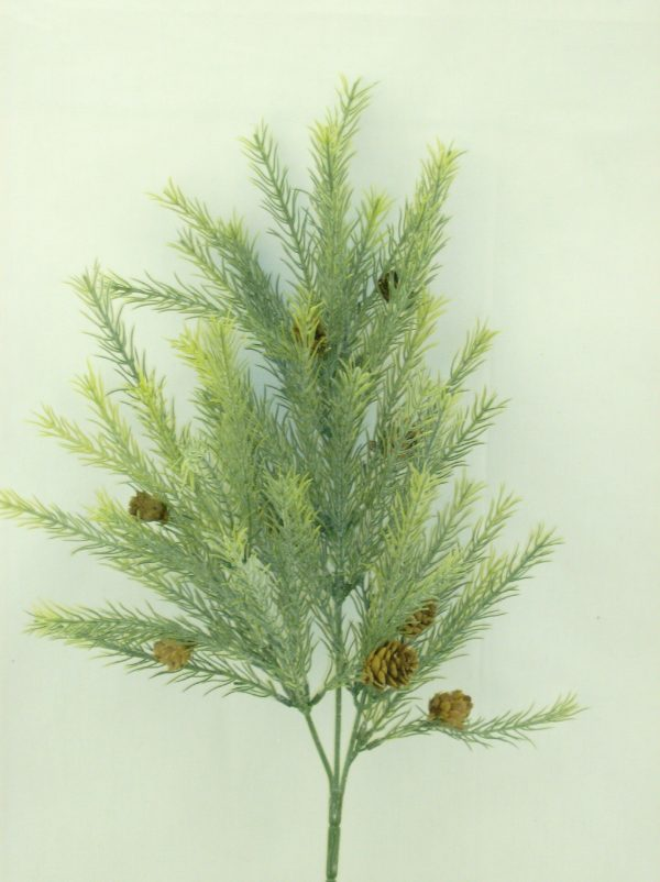 Evergreen Pine Spray