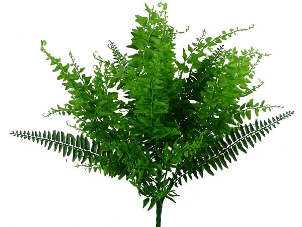 Fern & Greenery Bush