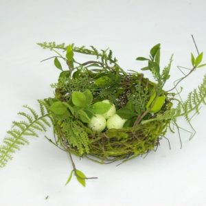 Moss Bird's Nest with Eggs
