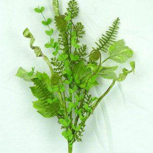 Curly Leaf & Grass Spray