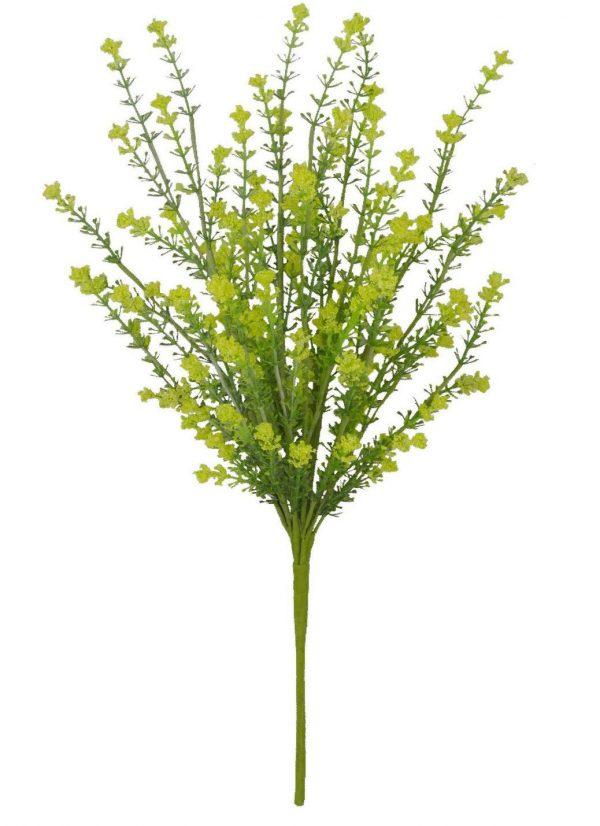"Yellow Gypso Bush - 20"""