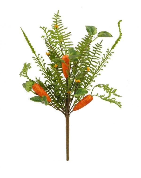 Carrot Bush - Set of 2