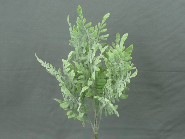 Flocked Dusty Miller bush x5 - 16""