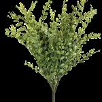 "Olive Green Boxwood Bush X7 - 23"""