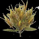 """Fall Plastic Mix Grass Bush x 14 - 18"""""""
