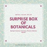 Surprise Box of Botanicals