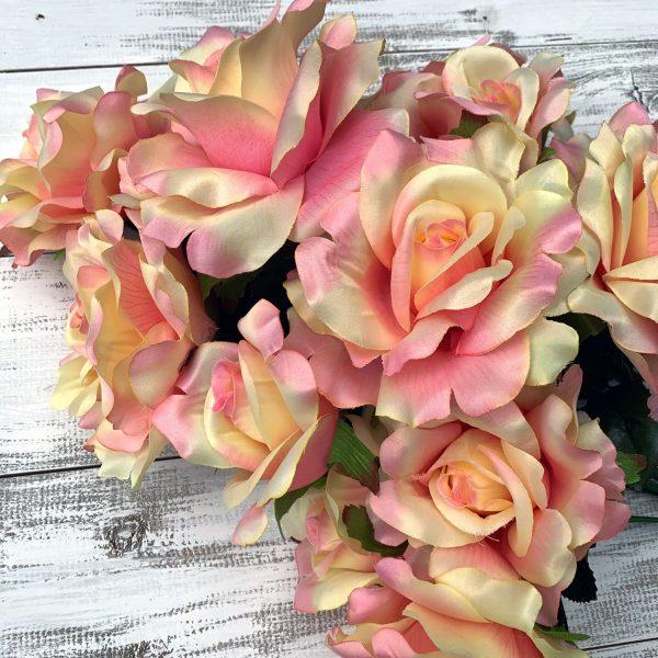 Rose Bush - Peach/Pink/Cream x 12