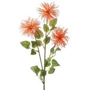 """Coral Allium Stem - 26"""""""