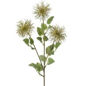 """Green Allium Stem - 26"""""""
