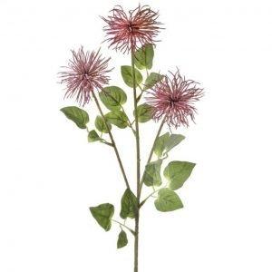 """Purple Allium Stem - 26"""""""