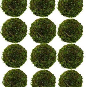 """2"""" Moss Balls - Pack of 12"""