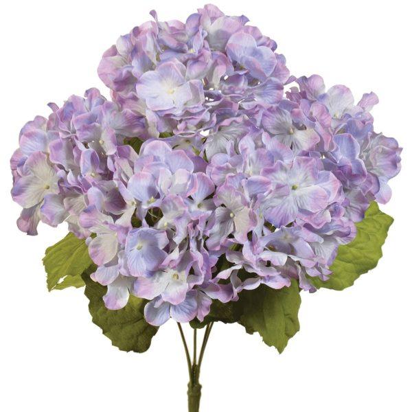 Lavender Purple Hydrangea